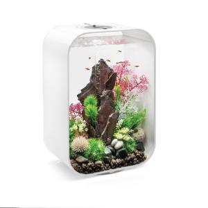 biOrb® LIFE Aquaria