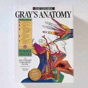 grays anatomy textbook
