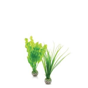 biOrb® Easy Plant Sets