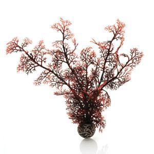biOrb® Individual Plants