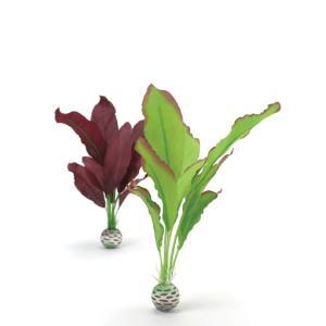 biOrb® Silk Plant Sets
