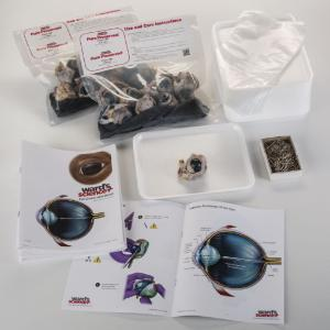 Ward's® Pure Preserved™ Cow Eye Dissection Kit