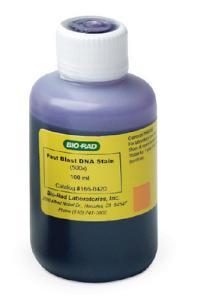 Bio-Rad® Fast Blast™ DNA Stain