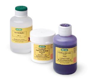 Bio-Rad® Small Fast Blast™ DNA Electrophoresis Reagent Pack