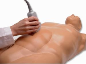 Abdominal aortic aneurysm ultrasound training model