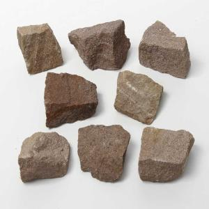Ward's Science Essentials® Sandstone