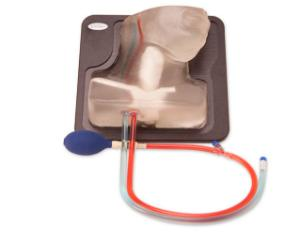 Transparent internal jugular central line ultrasound manikin