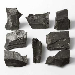Ward's Science Essentials® Bituminous Shale