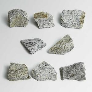 Ward's Science Essentials® Gray Gneiss