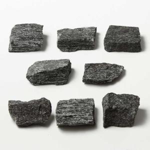 Ward's Science Essentials® Hornblende Schist