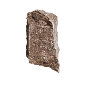 Ward's Science Essentials® Limestone