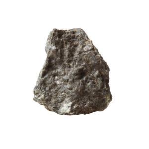 Ward's Science Essentials® Pyroxenite