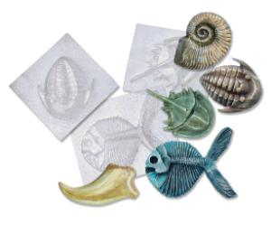 Fossil Molds