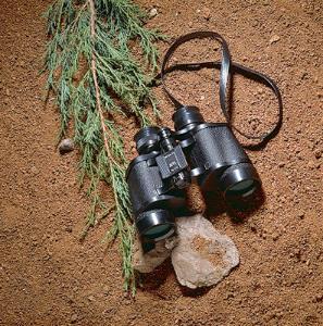 Bushnell Insta-Focus™ Wide-Angle Binoculars, 7X35