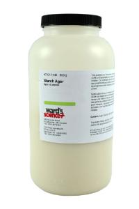 Starch Agar 500 g