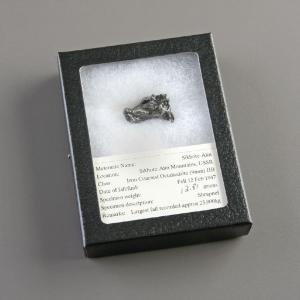 Iron Octahedrite (Coarse) (IIB)