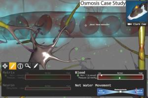 Cogent™ Interactive Cases™ Study Packages