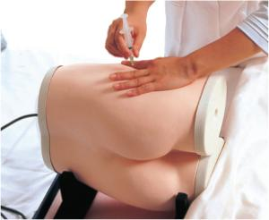 Kyoto Kagaku® Gluteus Maximus Injection Simulator