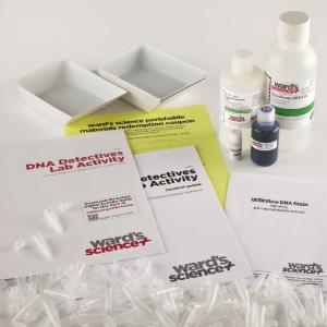 Ward's® DNA Detectives Lab Activity