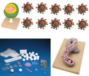 Virus bundle