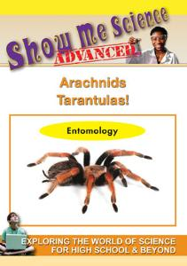 Show Me Science: Arachnids–Tarantula! Video