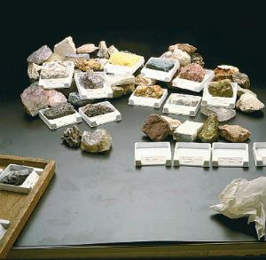 Ward's® University Systematic Mineral Collection