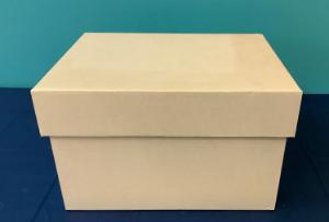 Tote box, cardboard, with lid