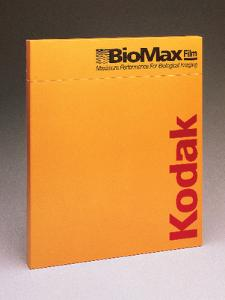 KODAK® BioMax® Maximum Sensitivity (MS) Autoradiography Film, Intensifying Screens, Carestream Health