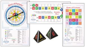 Classroom Molecular Biology Toys and Games