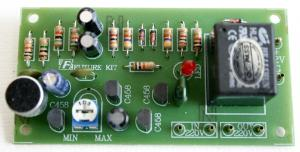 Voice Control Switch