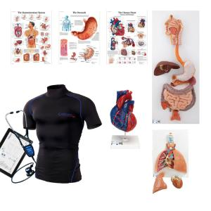 Intro to wearable auscultation kit
