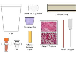 Science Take-Out® Cell Membranes: Diffusion And Osmosis