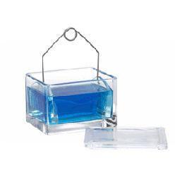 Microscope Slide Staining Dish With Rack Ward S Science
