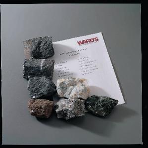 Ward's® Metamorphic Petro-Lab Set