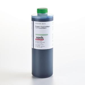 Ward's® Protein Fixative Stain