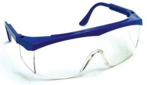 Mini Economy Safety Glasses
