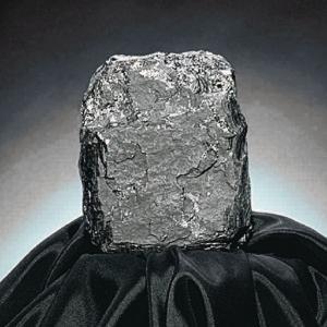 Ward's® Coal (Bituminous)