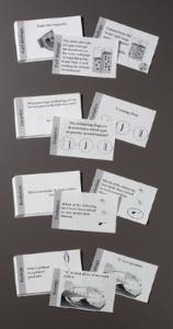 Ward's® Biology Flashcards