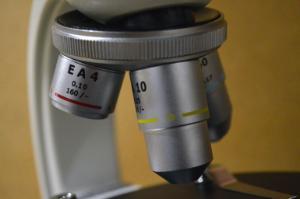Microscope, Polarizing, Boreal Science
