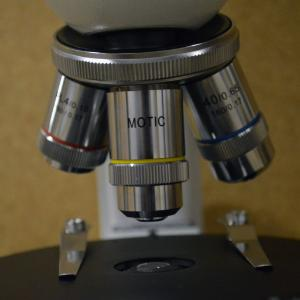 Microscope, Adv. Polarizing