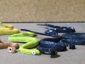 Snakes, Plastic