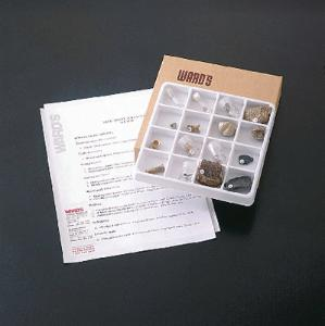 Ward's® Introductory Fossil Collection