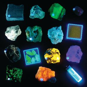 Ward's® Longwave Fluorescent Mineral Collection