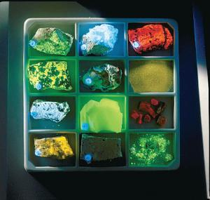 Introductory Fluorescent Mineral Collection