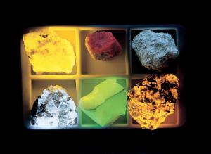 Ward's® Basic Longwave Fluorescent Mineral Collection