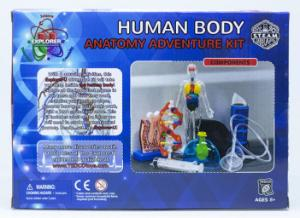 Human Body Adventure Kit