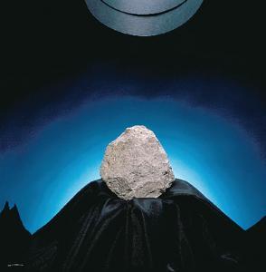 Ward's® Rhyolite (Gray)