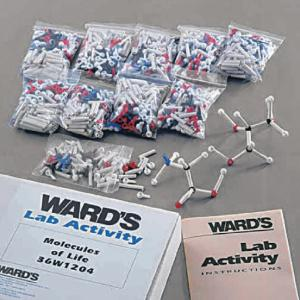 Ward's® Molecules Of Life Kit