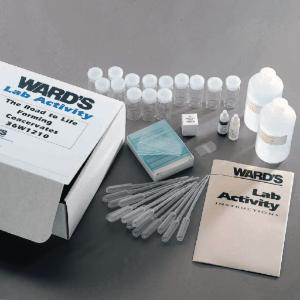 Ward's® The Road to Life: Forming Coacervates Lab Activity
