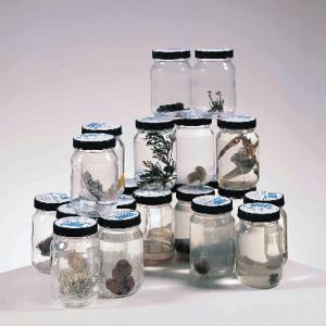 Monera/Fungi Jar Set